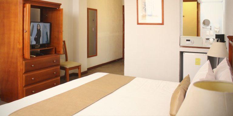 Hotel Plaza Vizcaya (2)