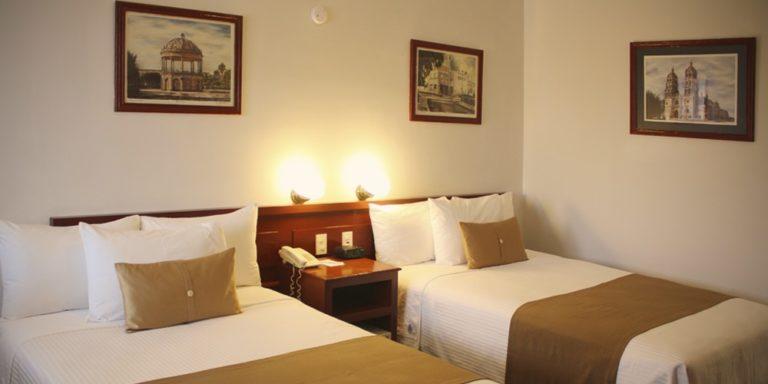 Hotel Plaza Vizcaya (8)